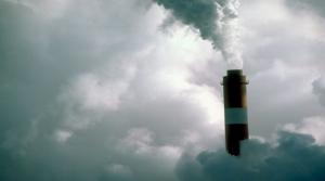 Contrapericiales medio ambiente: reclamaciones de daños y perjuicios